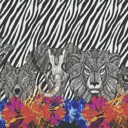 Serengeti Blackout Electric Roller Blind - Mono